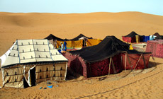 Private Bedouin Camp