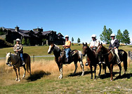 The group riding horses in New Zealand