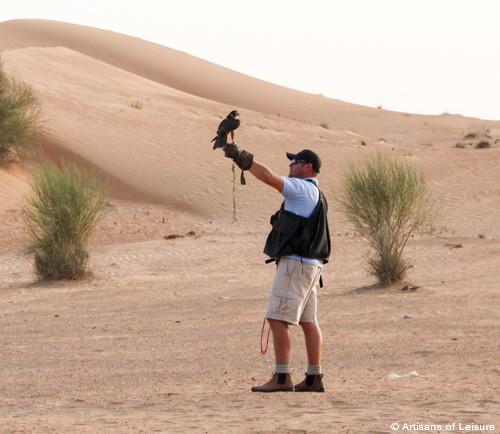 Dubai falconry lesson