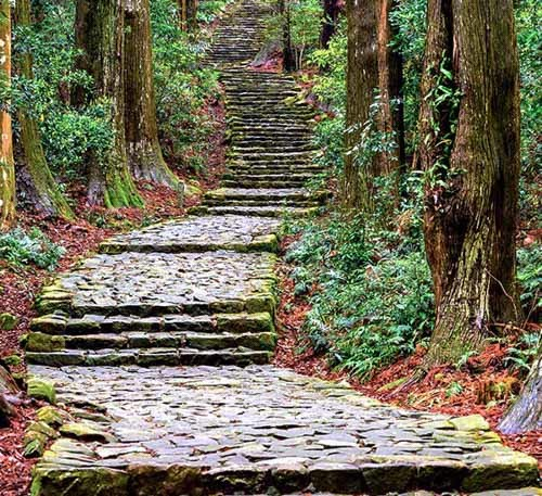 Scenic Tours To Japan