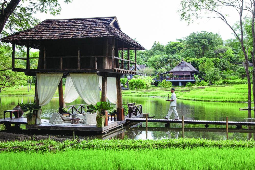 elephant tours Thailand