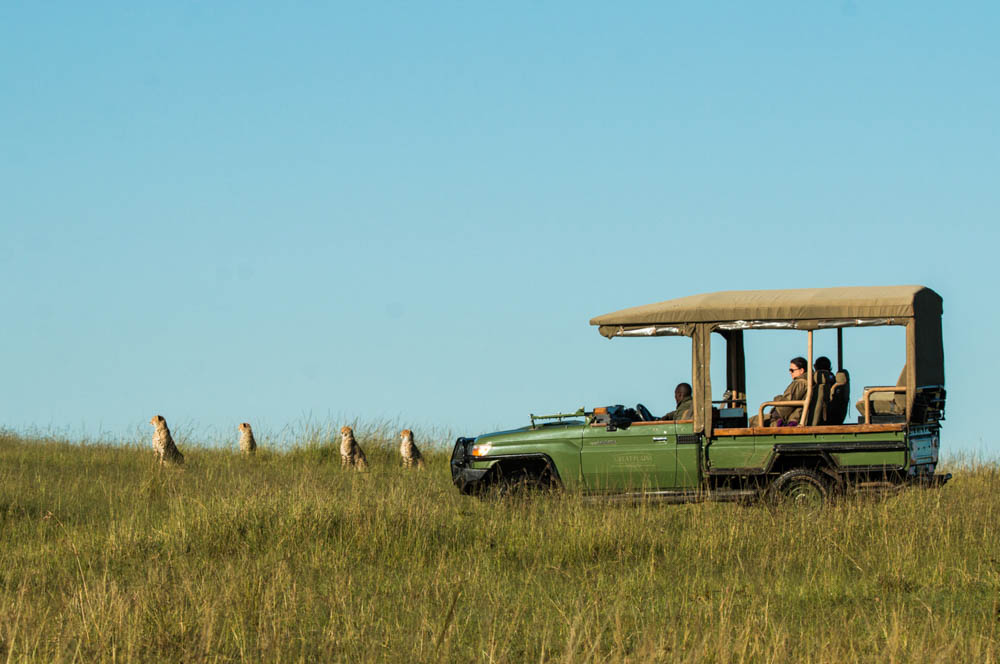 luxury Kenya tours and safaris