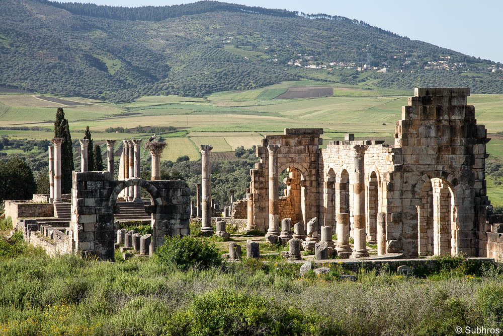 luxury Morocco tours Volubilis