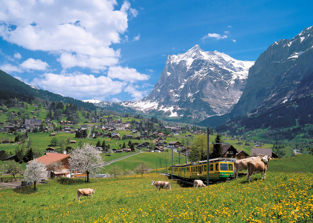 Alpine Travel Tours