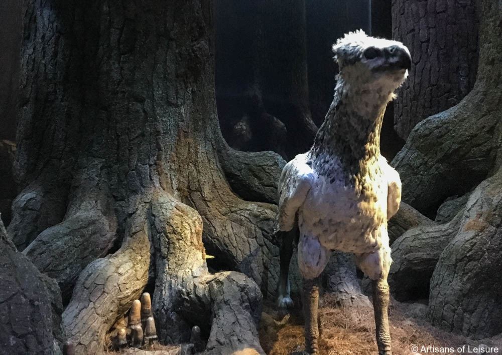 watch the animatronic Buckbeak in motion,