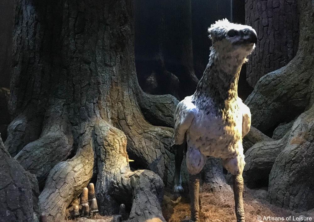 watch the animatronic Buckbeak in motion,