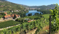 Food & Wine Tour of the Basque Country & Portugal
