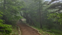Hiking Tour of Lebanon
