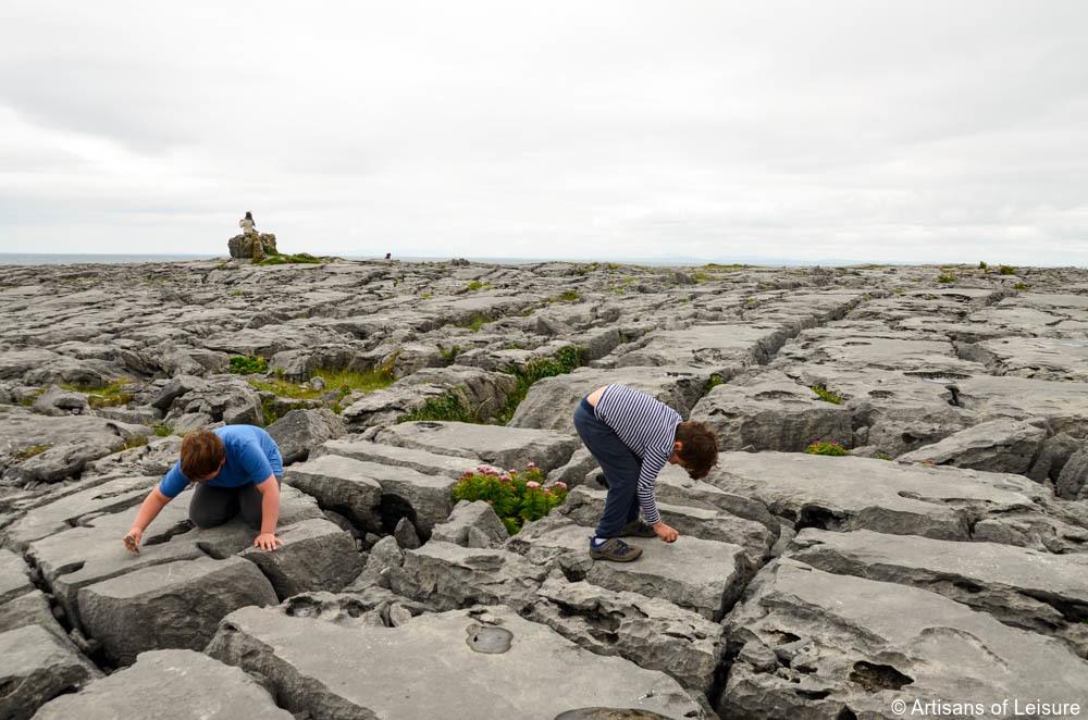 Family tours Ireland