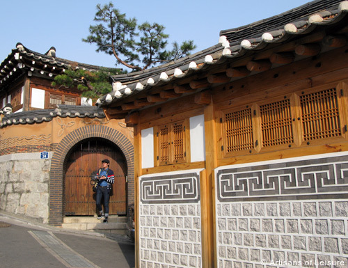 Private South Korea tours