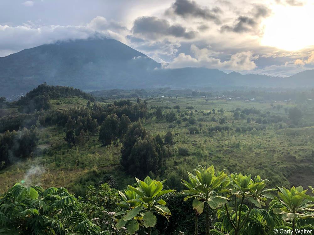 Private Rwanda tours