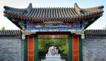Three Capitals: Tokyo, Seoul & Beijing