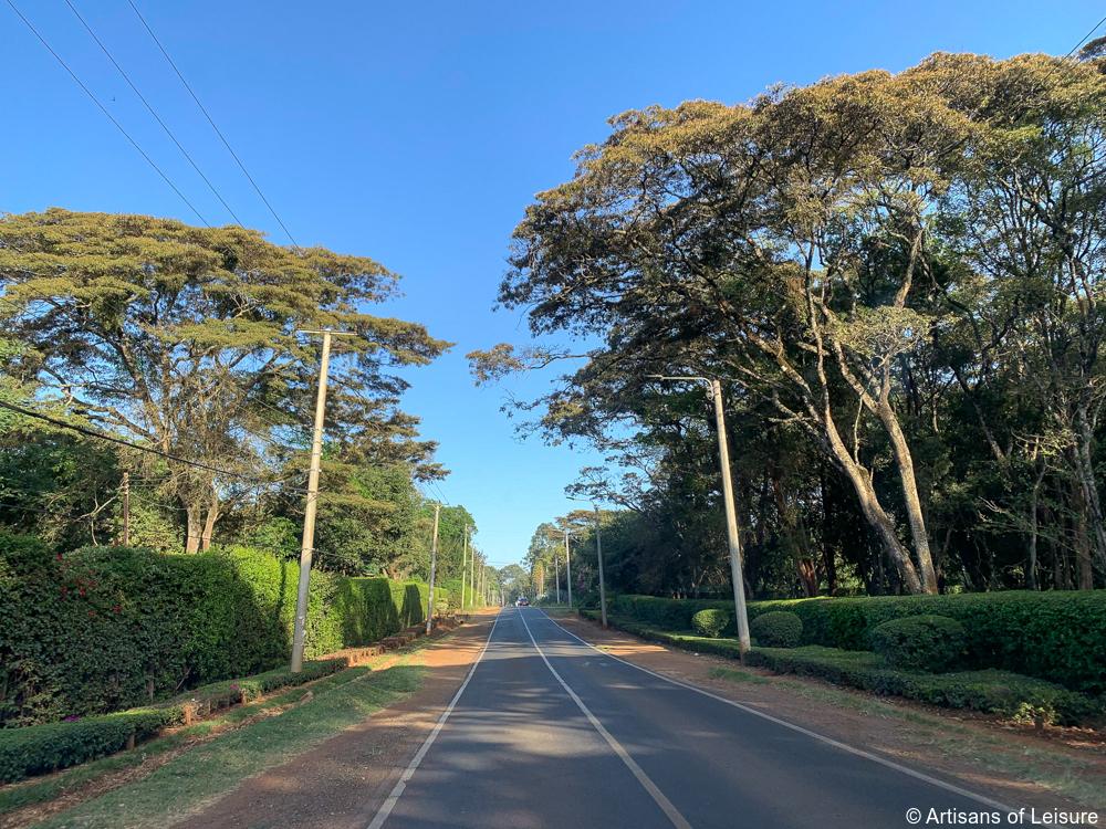luxury Kenya safari tours