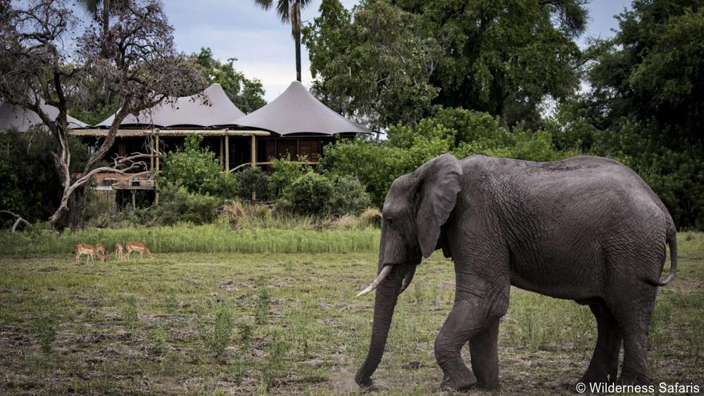 Private Botswana safari