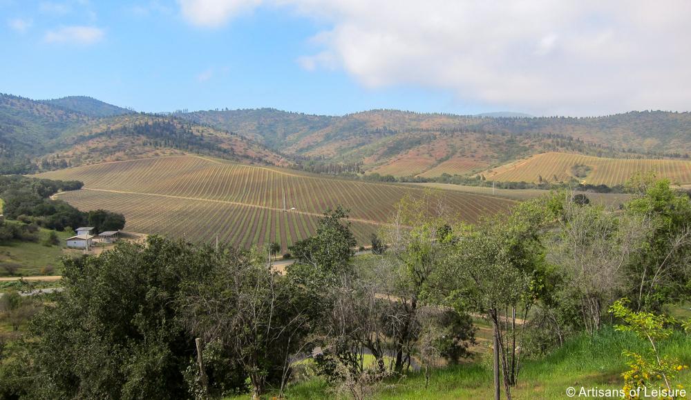 private Chile wine tours