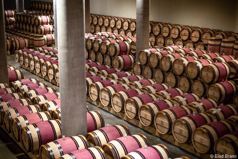 private Israel wine tours