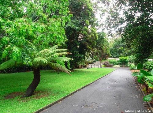 314-Sydney-garden.jpg