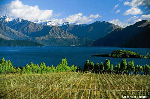 592-NZ_vineyards.jpg