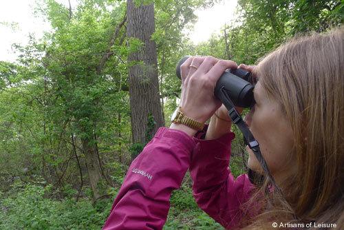 804-Stephanie_Dosch_birding.jpg